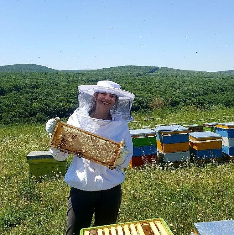 Iuliana Danila apicultor profesionist din Bucuresti