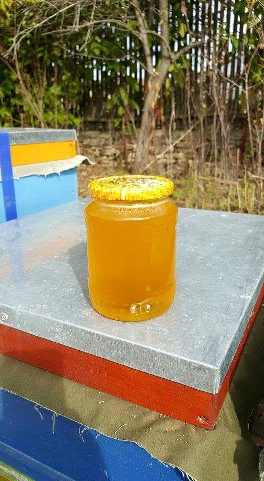 miere naturala floarea soarelui din dobrogea